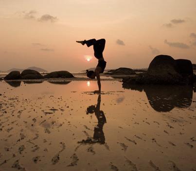 Adaptabilitate si flexib