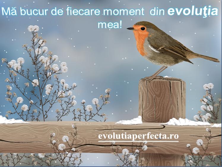 evolutia mea